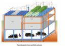 BACHMANN: PDU cu dispozitiv de protecție la supratensiune tip 3 (SPD)